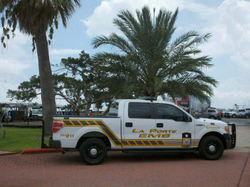 A white EMS pick up truck in front of a palm tree